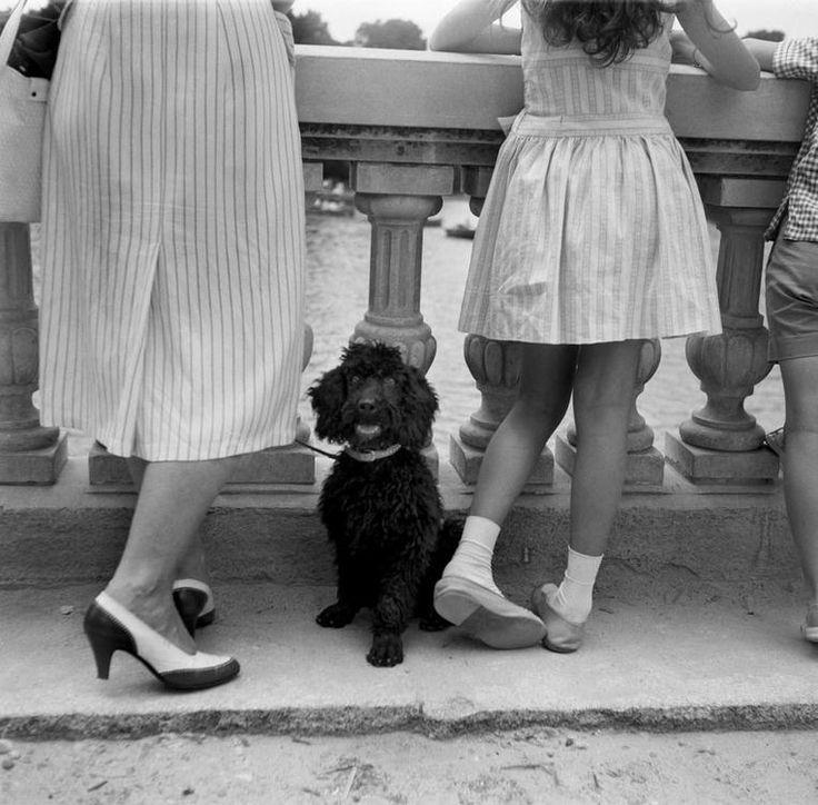 Francesc Català Roca :: El Retiro Park, Madrid, 1955