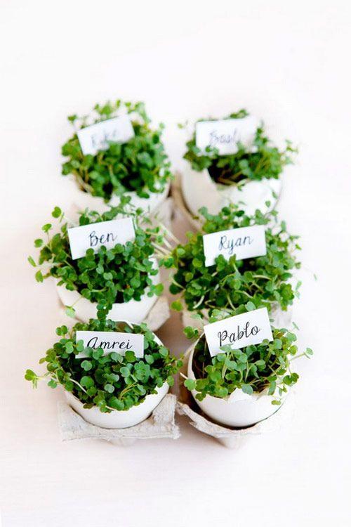 Almoço de Páscoa - mesa posta - marcadores de lugar de ovos com plantinhas