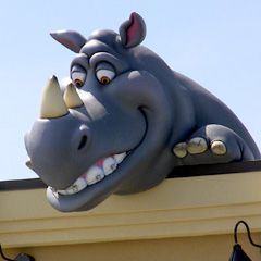 Rhino with Braces on Office Roof by Imagination Dental Solutions