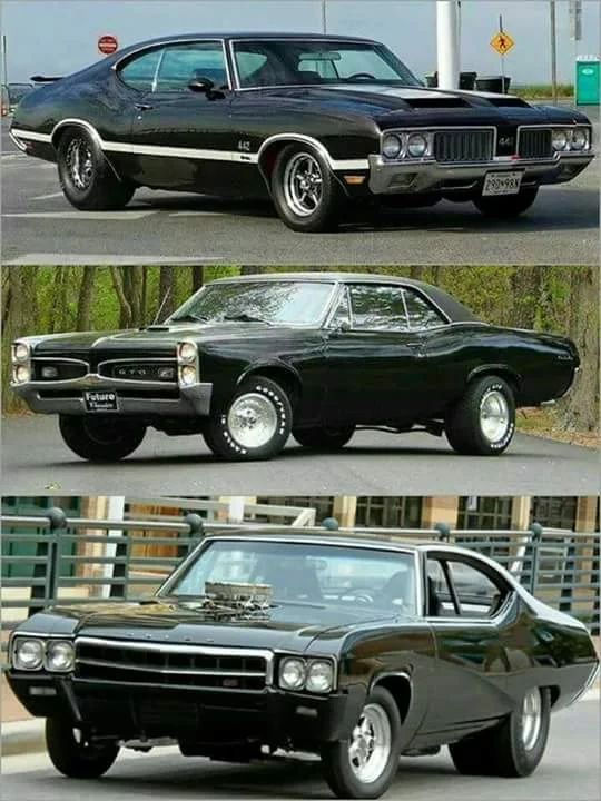 Photo: Top, Middle or Bottom?