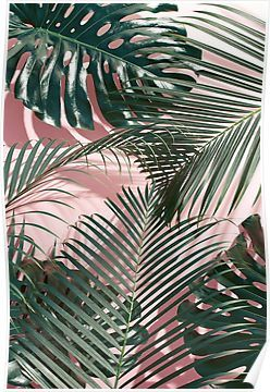 Green tropical leaves on a pink wall   Palm leaves   Poster