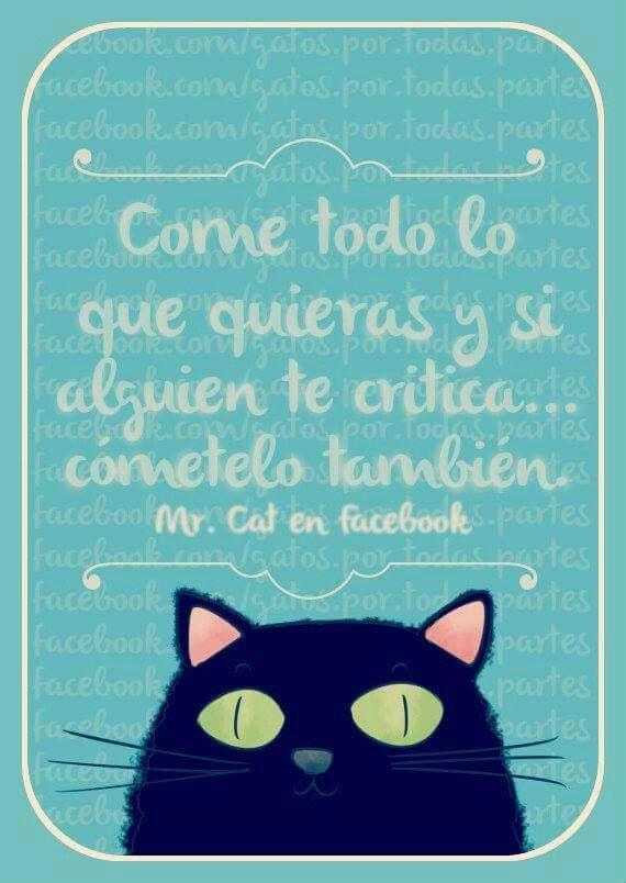 Consells gatils