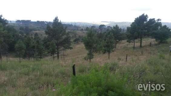 Vendo 2 has en Villa Yacanto. Calamuchita. Cba. 2 y 1/2 has ( son 21.900 metros cuadrados ) en Villa Yacanto. Calamuchita. Cordoba. Sobre camino a ... http://san-javier-y-yacanto.evisos.com.ar/vendo-2-has-en-villa-yacanto-calamuchita-cba-id-963232