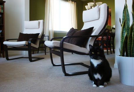 17 Best Images About Poang Chair On Pinterest Armchairs