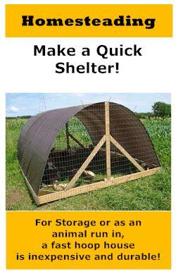 Hoop Shelter