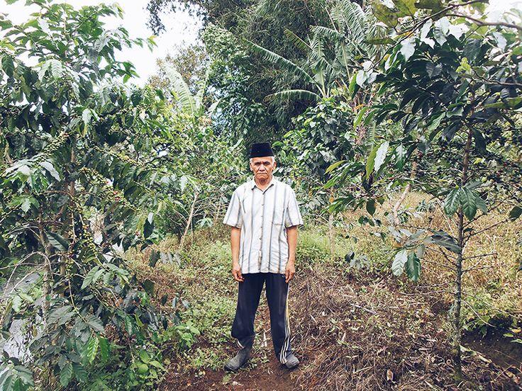 Pak Nazril petani kopi dari Nagari lasi Sumatra Barat