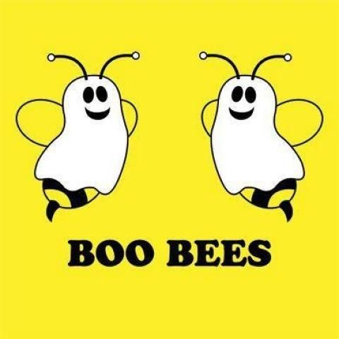 boo beesTees Shirts, Grammar Jokes, Funny Pictures, Cancer Awareness, Funny Quotes, Funny Stuff, Boos Bees, Halloween Ideas, Happy Halloween
