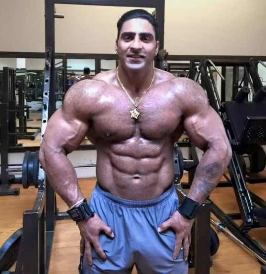 Muscle bodybuilder from Turkey | #Arab Delights | Muscular ...