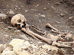 Antropología forense - Wikipedia, la enciclopedia libre