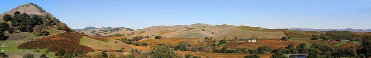 Napa Valley, Napa County, CA. 6/8 representing geology or landforms.