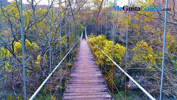 El pasadofin de semana MegustaGalicia.com se ha trasladado a la zona de Tenorio, en el municipio pontevedrés de Cotobade, concretamente al puente colgante de Calvelo. El puente colgante sobre el río Lerez que comunica la zona de Calvelo con San…