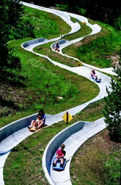 Breckenridge alpine slide - I LOVE Alpine Slides!! I've been to slides in Park City, UT and the Black Hills, SD.