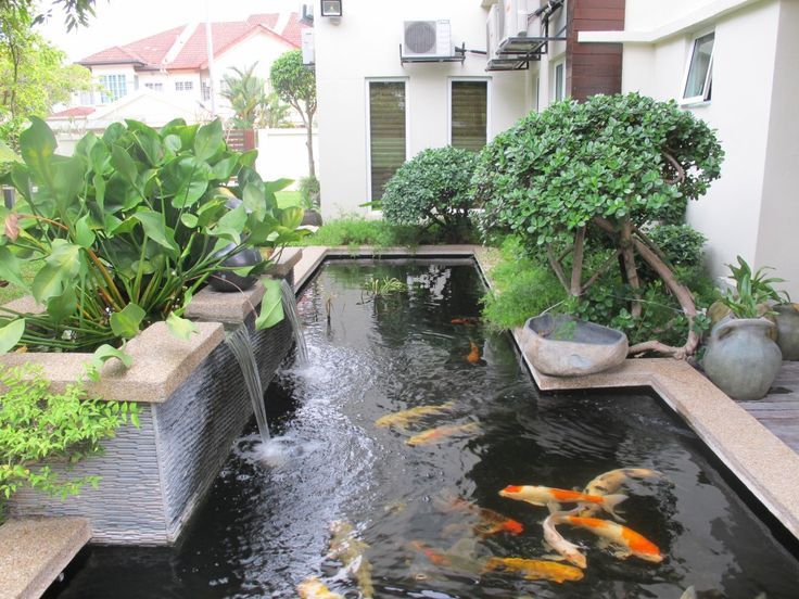 17 best ideas about pond design on pinterest ponds for Nice koi fish pond
