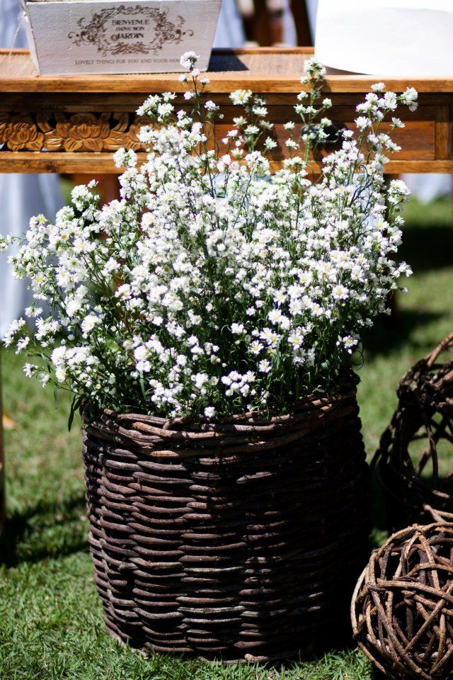 Flores blancas.................... mis preferidassss.......