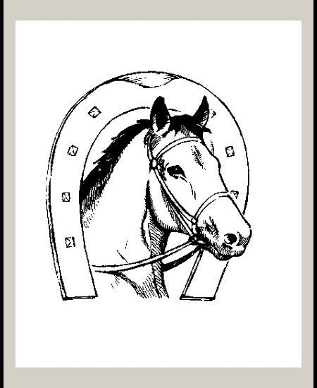 8 best chevaux canadiens images on pinterest canadian - Dessin fer a cheval ...