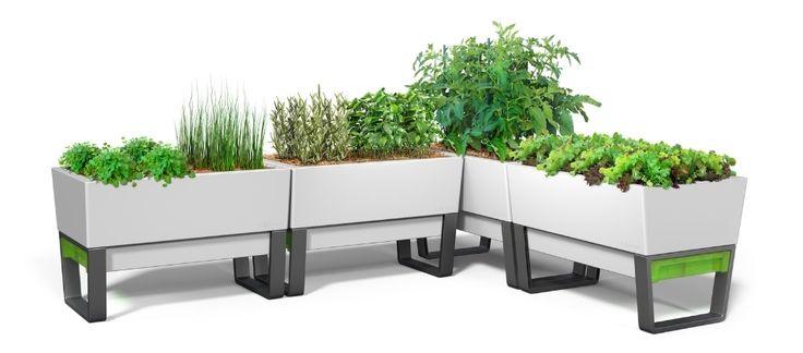 glowpear urban garden planter - Google Search