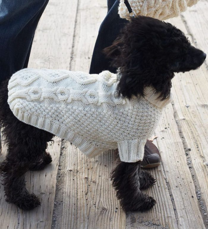 Free Knitting Pattern For Biscuits Bones Dog Coat Cable