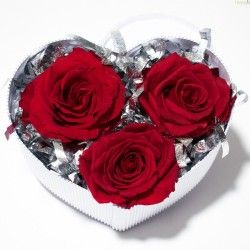 3 Rosas Preservadas