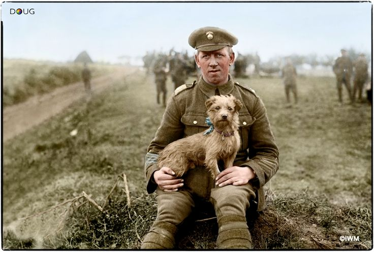 """A soldier with """"Sammy"""", the mascot of 1/4th Battalion, Royal Northumberland Fusiliers. This dog went to France with the unit in April 1915, was wounded in the Second Battle of Ypres, and also gassed on Whit Monday, 1915. He was with the battalion in the trenches and injured by shell fire on several occasions. The dog was also with the battalion during the Somme offensive. (Photo source - IWM Q 1451) Photographer - Lieutenant Ernest Brooks (Colour by Doug)"""