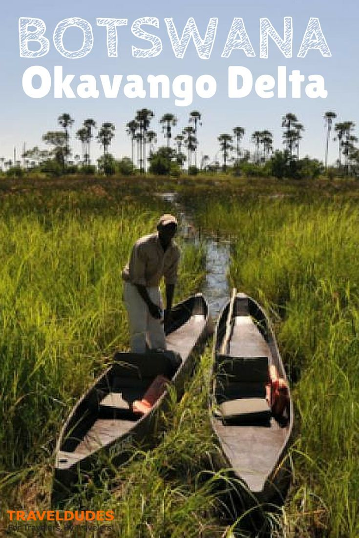 Best Time to Visit the Okavango Delta, Botswana | In the Okavango Delta and northern Botswana, May and June are ideal times to travel to Botswana | Travel Dudes Social Travel Community: