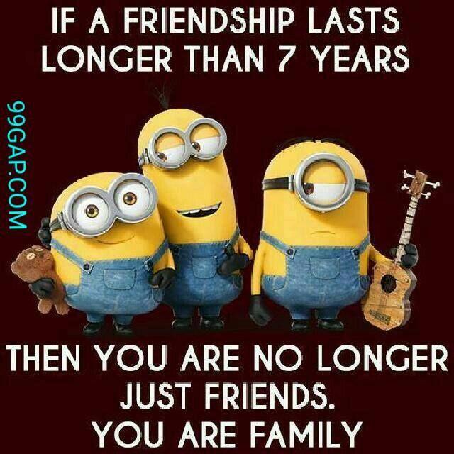 Lol Funny Minion Joke About Friends Funny Minion Quotes Best Friend Quotes Funny Friends Quotes Funny