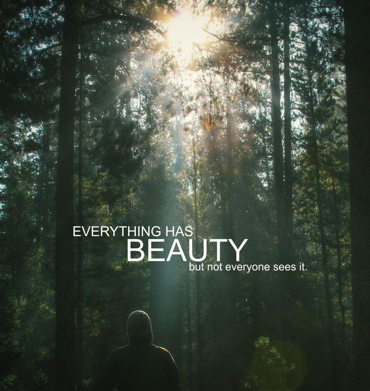 Beauty Quotes - BrainyQuote