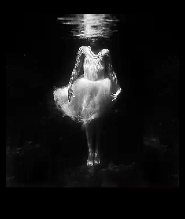 Best Underwater Love Images On Pinterest Amazing Art Black - Amazing black white underwater photography