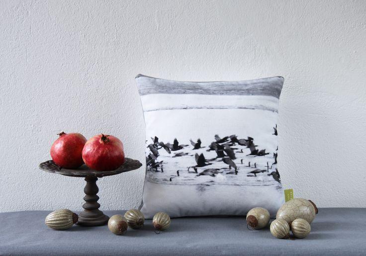 Dieses Foto erinnert mich an ein Vermeer Bild. Ich mag diese Ruhe und Schlichtheit der Anordnung. #cushion #kissen #kormoran #schwarz #weiss #black #white #cormorant #vermeer