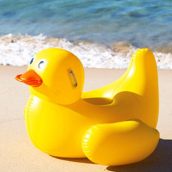 Giant duck for the beach