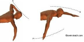 Front crawl arm technique showing elbow lead and hand entry.