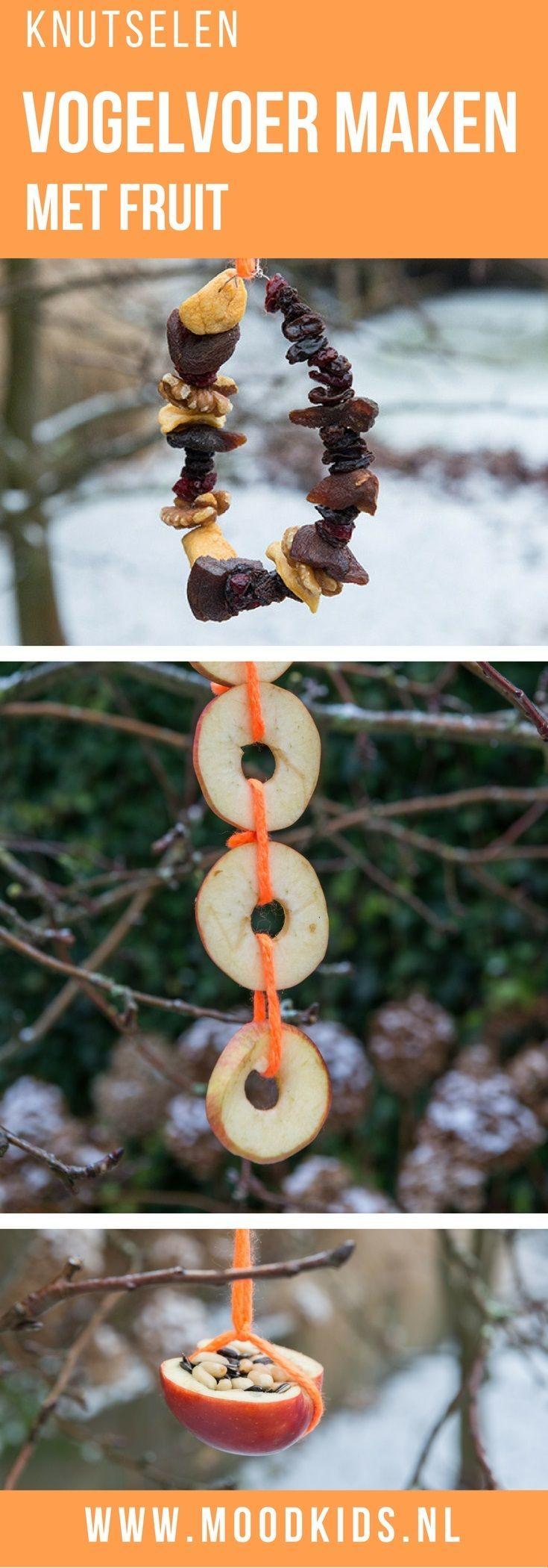 Maak samen met je kind voer voor de vogels in de tuin. Dit keer hebben we wat DIY ideetjes voor vogelvoer maken met fruit. Je leest ze hier.
