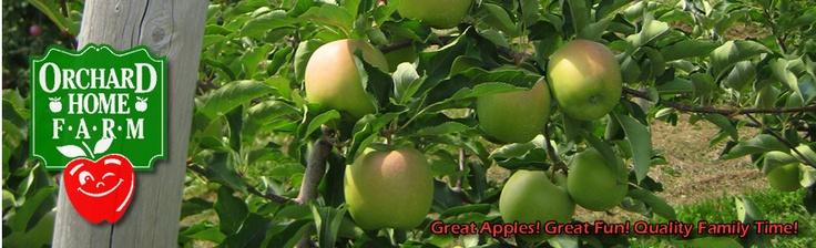 Orchard Home Farm - far away though