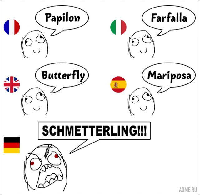 Что русскому бабочка, то немцу шметтерлинг