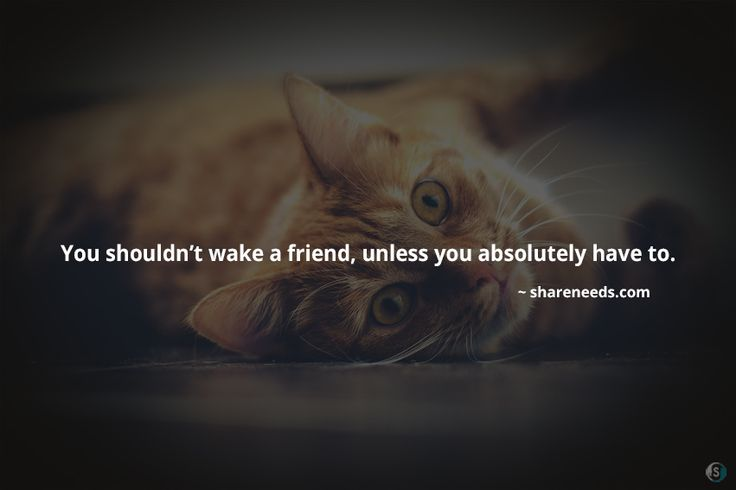 You shouldn't wake a friend, unless you absolutely have to.  #friendshipquotes