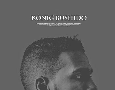 +bushido's website redesign and branding+