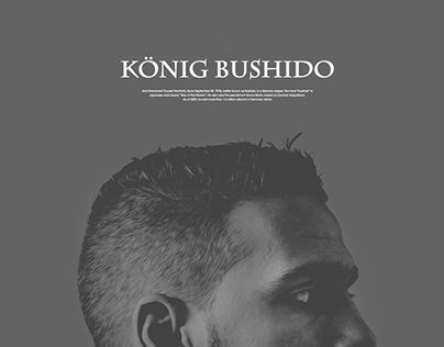 +bushido's website redesign and branding+