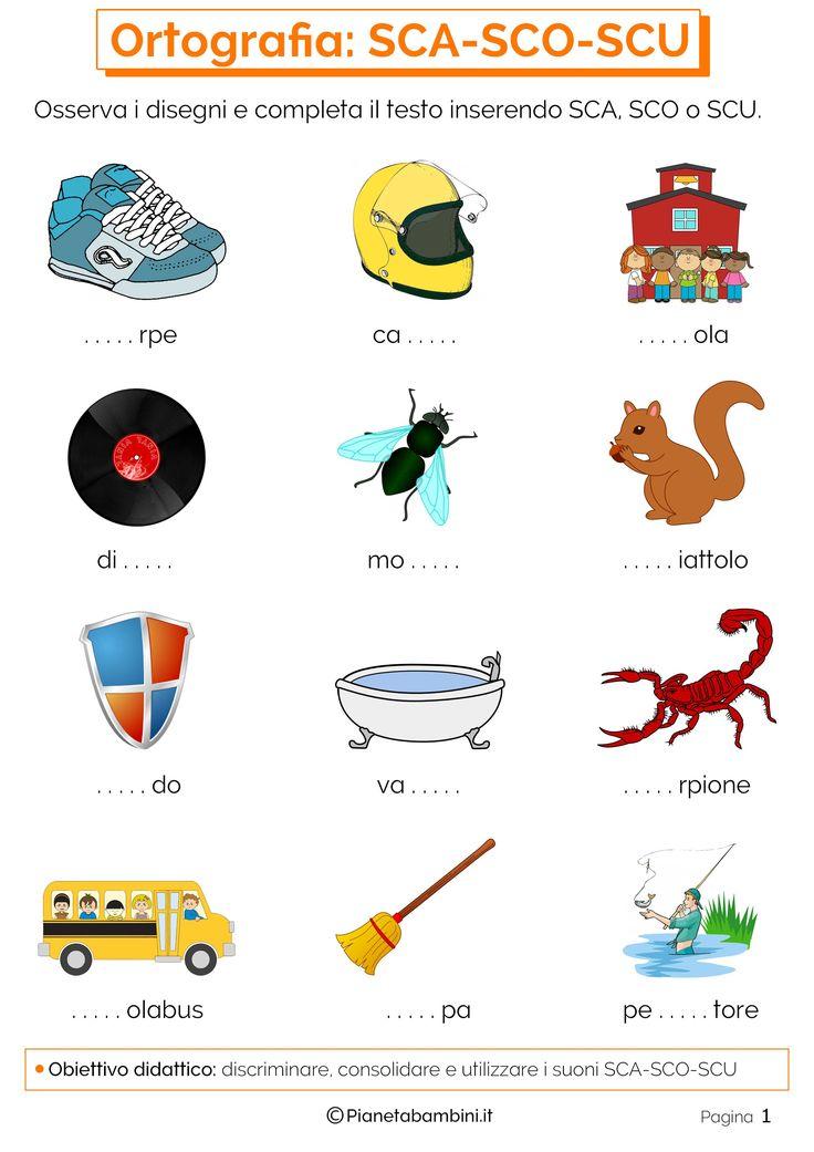 Schede didattiche per imparare ad utilizzare e discriminare i suoni SCA SCO SCU: esercizi pronti da stampare in PDF per bambini della scuola primaria
