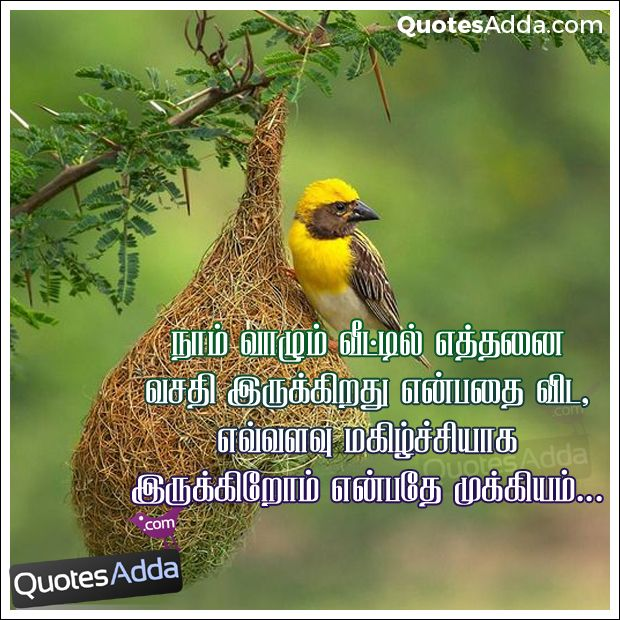 Tamil New Life Images Great Inspirational Life Words Inspiration