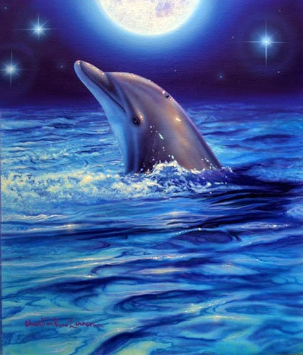 Dolphin in moonlight