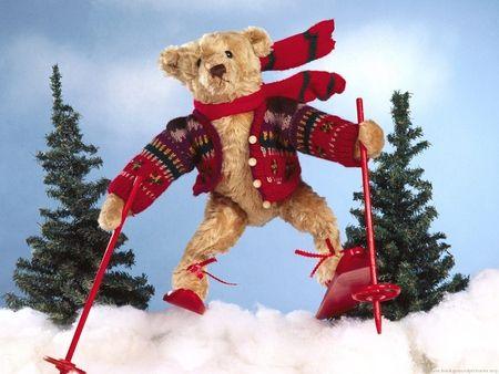 Alpine Teddy - Funny Wallpaper ID 532745 - Desktop Nexus Entertainment