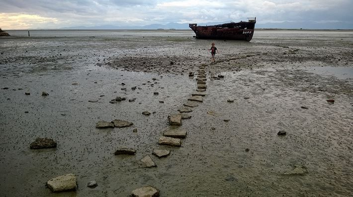 Stepping stones over mud flats
