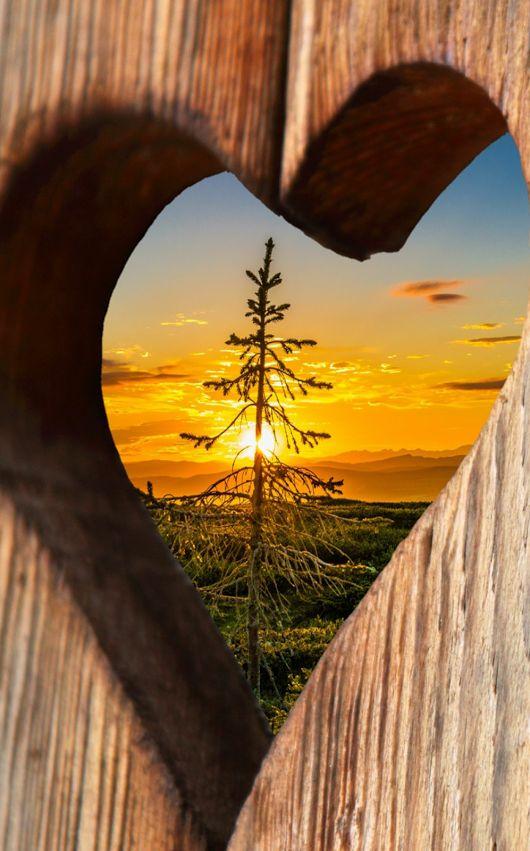 nature heart hearts google scenery