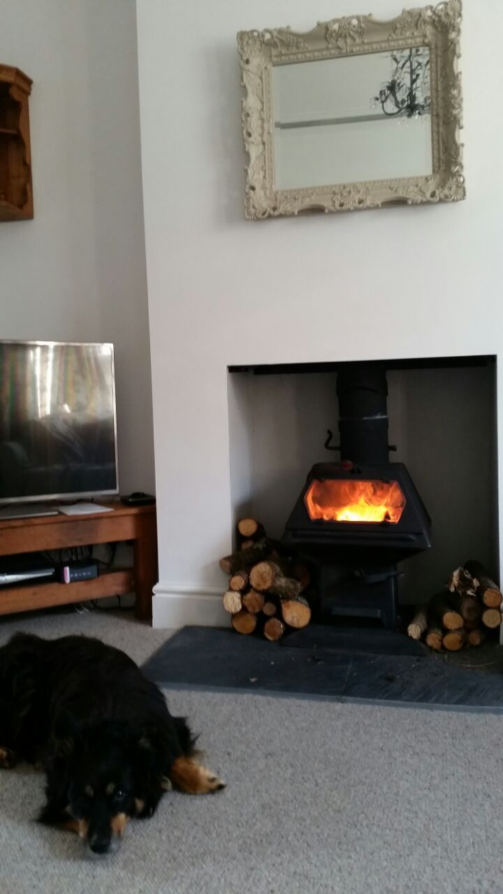 A beautiful pic for our board sent in from Catrin, very contented dog in front of a roaring Hybrid. We were a little concerned when we saw the placing of the logs though - a wee bit too close! Logs do look great stacked around the stove but take care, maybe a log holder which shields them or one that sits on the hearth, (see our FB page for our log holder).