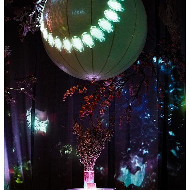 【rinko_su】さんのInstagramをピンしています。 《#花#景色#風景#桜#アート#写真好きな人と繋がりたい#東京カメラ部#コレド室町#flowers#flowersbynaked#event#flowerstagram#spirit#art#colorful#beautiful#spring#view#flowerlovers#season#landscape#awasome#Instagram#instagood#instaview#instabeautiful#photo#team_jp#ig_japan#OLYMPUS》