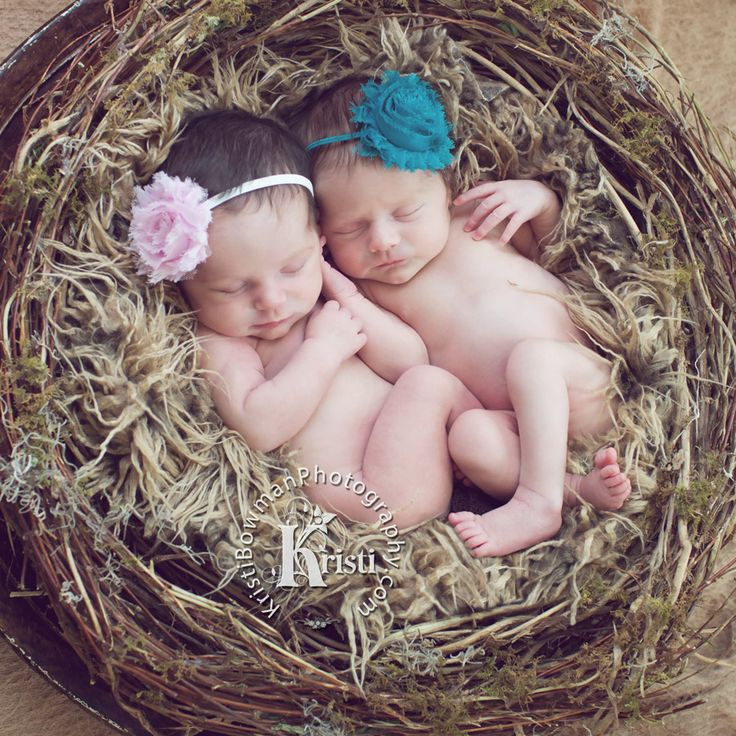 Kristi bowman photograhy kristi bowman www kristibowmanp reno · twin girlsnestnewborn twinsreno nevadanewborn photographytwin
