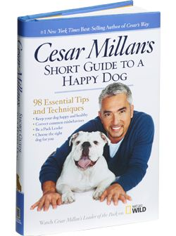 """By mastering the walk, you have the ability to truly bond with your dog as her pack leader. The walk is the foundation of your relationship.""    – Cesar Millan"