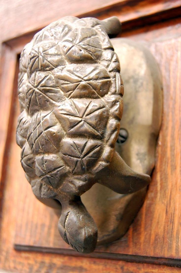 209 best door knockers images on pinterest door knobs door handles and door knockers - Turtle door knocker ...