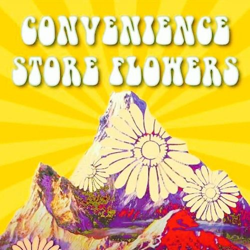 Uptempo (Leo Kottke cover) by ConvenienceStoreFlowers on SoundCloud