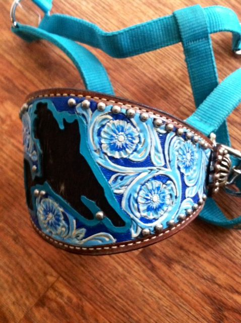 bling horse halters | Bronc Halter - Painted Huckleberry