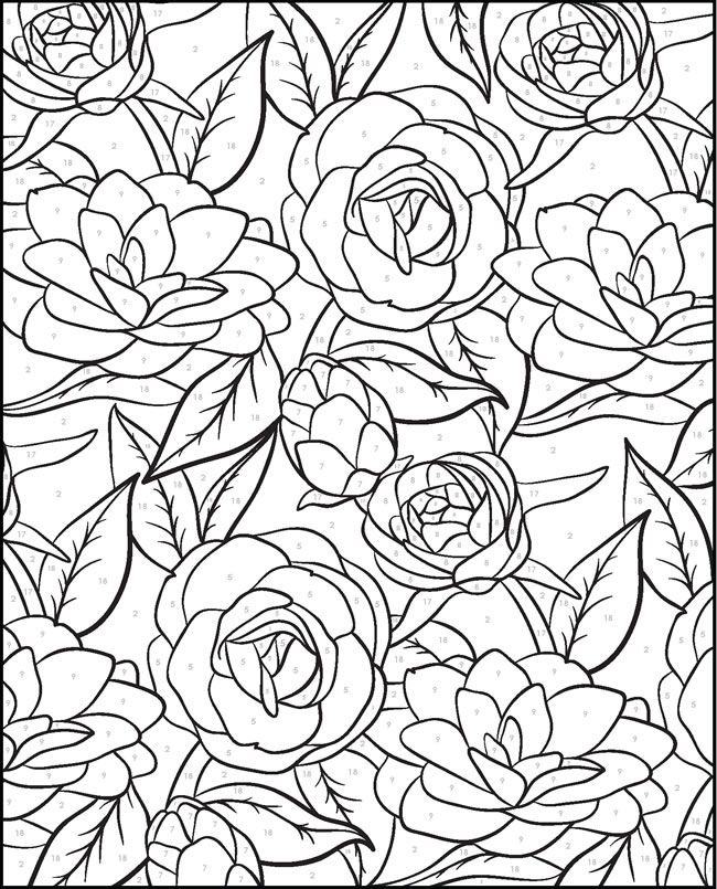 colour by numbers creative haven floral designs paint by number welcome to dover publications flower coloring page